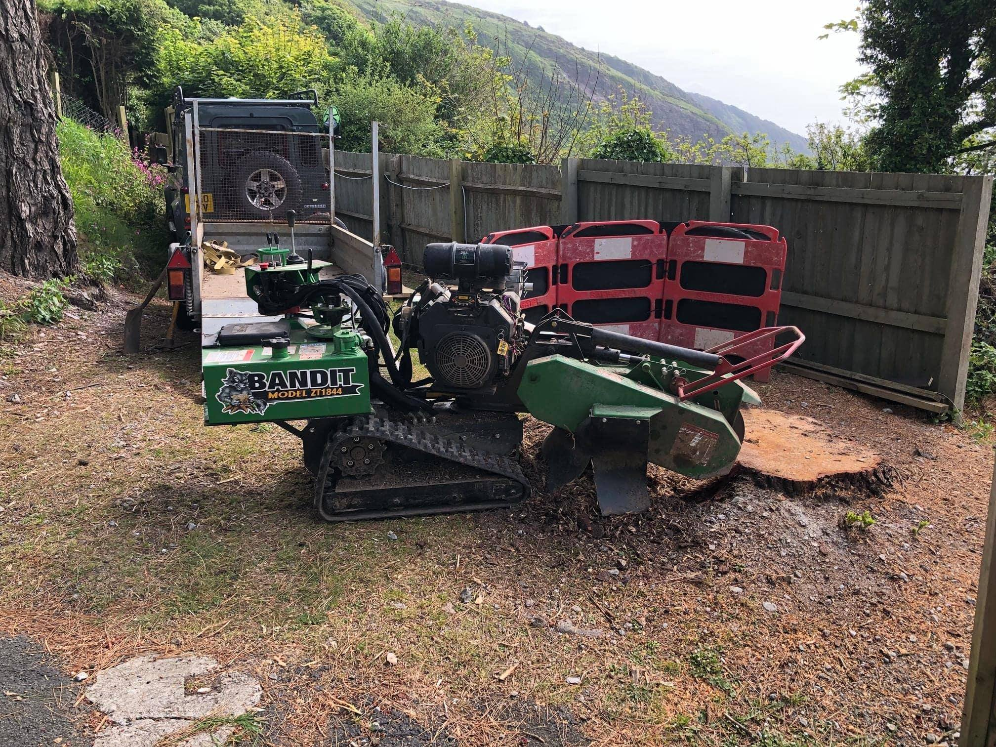 Tree Stump Grinding Plymouth & Tree Stump Removal Plymouth