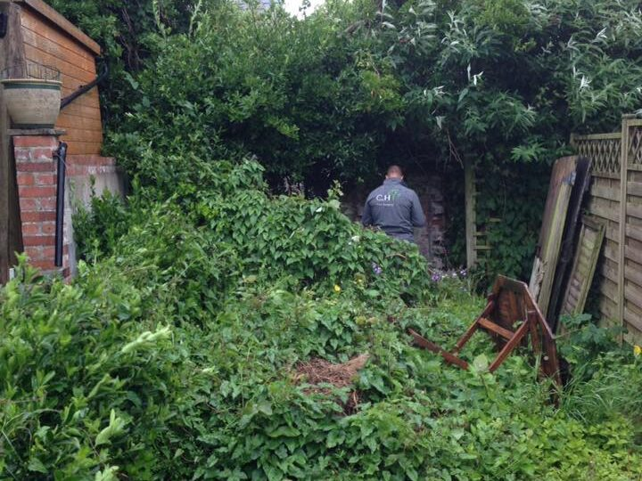 Overgrown garden in Plymouth before professional site clearance