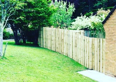 Fencing gates and decking services by Tree Surgery company in Plymouth