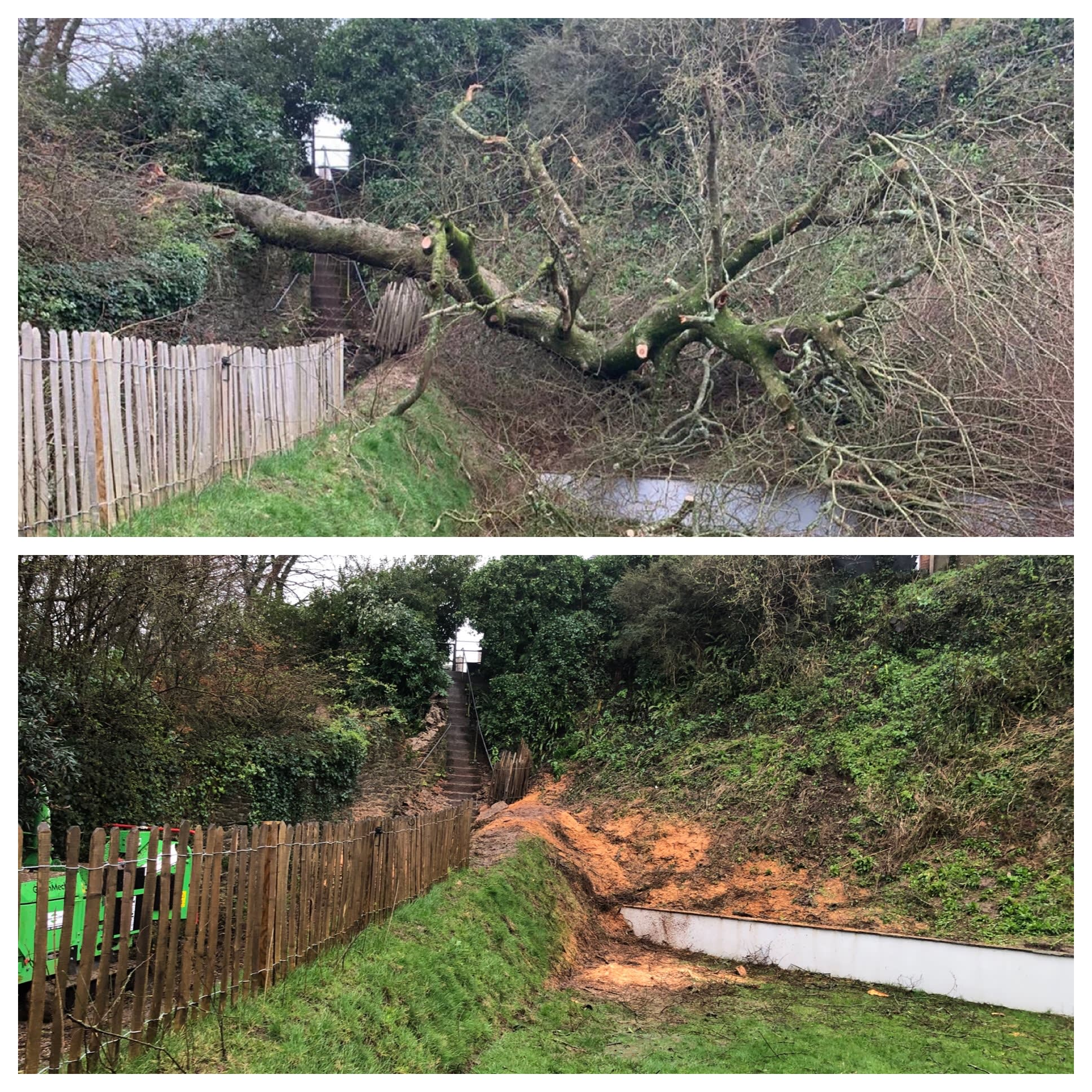 Fallen trees Plymouth Call Out