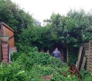 garden clearances ivybridge