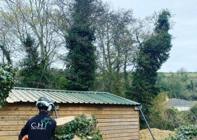 garden clearances modbury